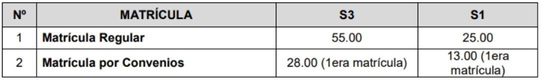 Costos de matricula del instituto carrion